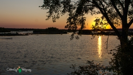 Spring Lake Sunrise 136