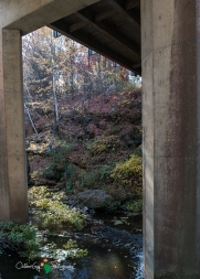 Augusta - Dells Mill 017