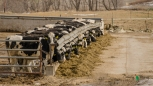 Blair Amish Project 025