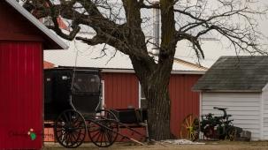 Blair Amish Project 052