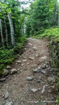 Trail to Upper Falls & Devil's Kettle