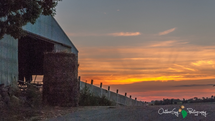 OutdoorGuyPhotography-6036-1