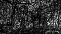 OutdoorGuyPhotography-6193
