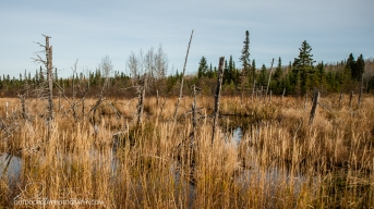 OutdoorGuyPhotography-3605