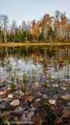 OutdoorGuyPhotography-3614