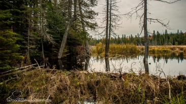 OutdoorGuyPhotography-3636