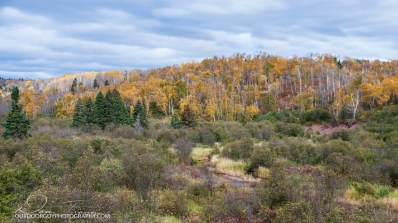 OutdoorGuyPhotography-6863