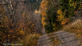 OutdoorGuyPhotography-6952