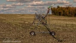 yeah...irrigation!