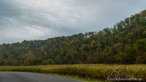 OutdoorGuyPhotography-9349